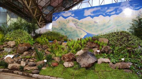 Fiesta Nacional de la Flor de Escobar, Decoracion, diseño, jardines