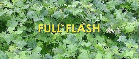 Flashサイトをフルスクリーン表示させてくれるjavascript