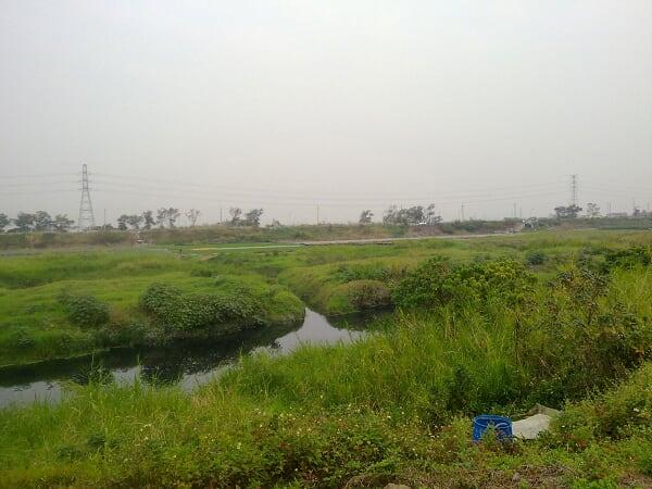 河岸的那一頭是大洲農場,聽說是未來的台南市政府所在地,不知道消息可不可靠