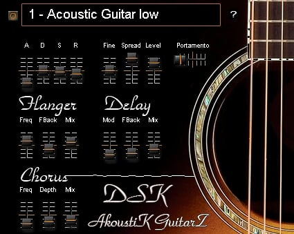 dsk-akoustik-guitarz.jpg